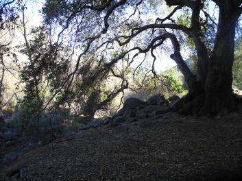 Outside San Diego, CA