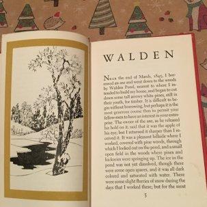 walden-4